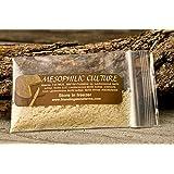 Mesophilic Culture - MM100