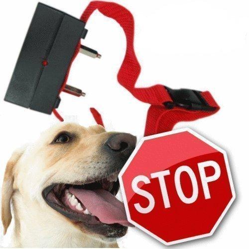 Electronic Anti-Bark Dog Training Shock Collar No Bark