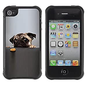 LASTONE PHONE CASE / Suave Silicona Caso Carcasa de Caucho Funda para Apple Iphone 4 / 4S / Pug Wrinkled Funny Eyes Dog Small