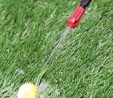 Chapin 20541, 1 Gallon Lawn, Garden and