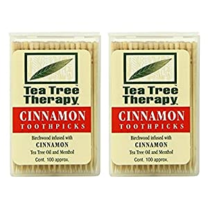 Tea Tree Oil Therapy Toothpicks, Cinnamon, 100 Count