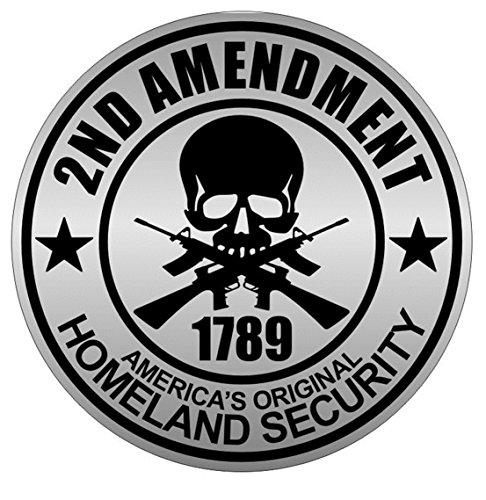 1 PCs Wonderful Popular 2nd Amendment Car Stickers Sign 1789 Guns Emblem Vinyl Easy to Install Size 2