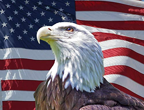 July 4th Greeting Cards - Patriotic Eagle - PE100. Greeting Cards with an Image of a Bald Eagle in Front of the American Flag. Box Set Has 25 Greeting Cards and 26 Red Colored Envelopes.