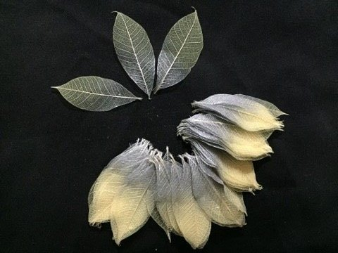 100 Pcs. Silver Metallic Two Tone Skeleton Natural Ficus Religiosa Leaves Artificial Leaves Craft Card Scrapbook Diy Handmade Embellishment Decoration Art By' Thai Decorated ... (Two Tone Leaves)