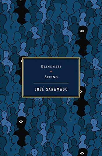 Blindness / Seeing ebook
