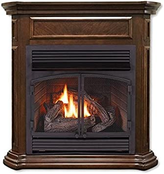 Amazon Com Duluth Forge Dual Fuel Ventless Fireplace Insert