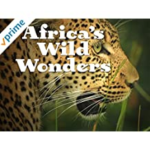 Africa's Wild Wonders