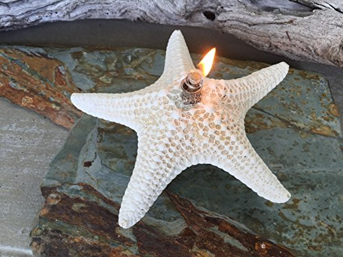SeaThingz-Starfish-Candles-Unique-Natural-Oil-Lamps-for-Indoor-Outdoor-Decorative-Lighting-and-Coastal-Home-Decor