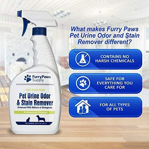 Amazon.com : Furry Paws Quita manchas y quita olores de ...
