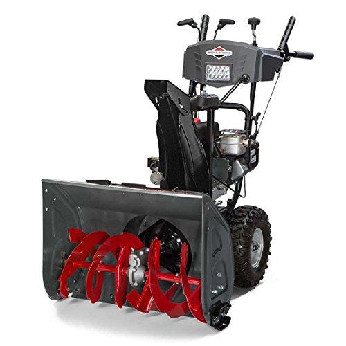 Briggs & Stratton 1696619, 250cc