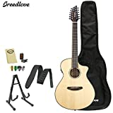 Breedlove PURSUIT-12 Pursuit 12 String Acoustic-Electric Guitar with Strap, Stand, Picks, Tuner, Cloth and Gig Bag