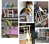 QBLEEV Bird's Stand Playground Climb Wooden Perches