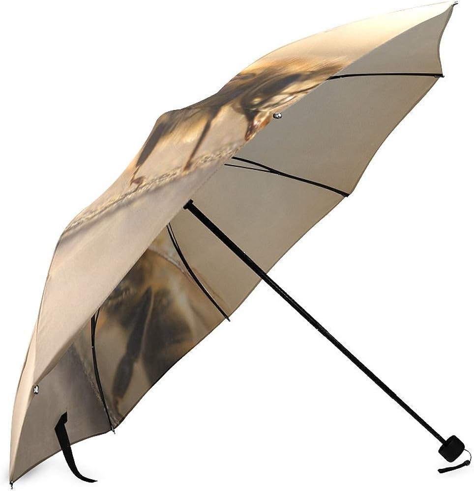 Umbrella Bee Custom Umbrella Automatic Folding Umbrella Rainproof /& Windprrof