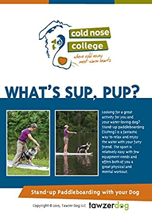 Whats Llc Stand For >> Amazon Com What S Sup Pup Stand Up Paddleboarding With