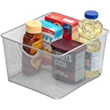 Silver Mesh Open Bin Storage Basket for Cleaning Supplies Laundry Etc. (1, 10x8.8x5.8) 199