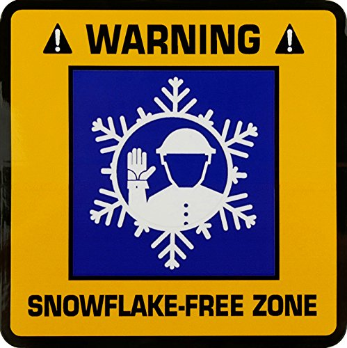 Snowflake-Free Zone 4-inch Square Stickers (Set of 2)
