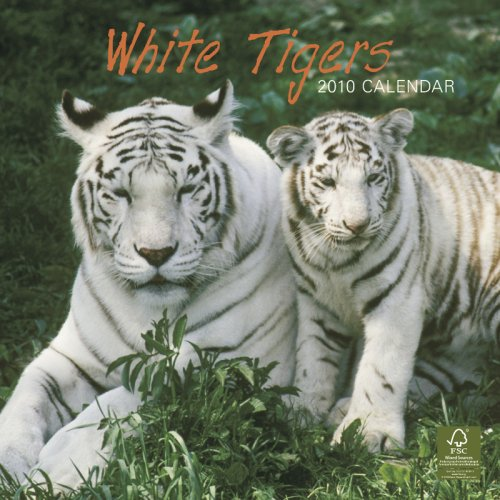 White Tigers 2010 Square Wall (Multilingual Edition)