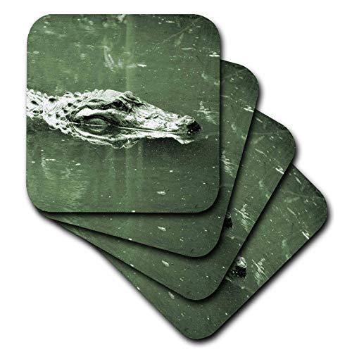 (3dRose Susans Zoo Crew Animals - alligator swimming head green tint reptile - set of 8 Coasters - Soft (cst_182050_2))