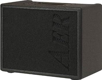 AER Compact 60/2 60W Acoustic Instrument Guitar Amplifier Amp