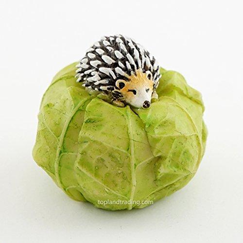 Miniature Fairy Garden Hedgehog Sleeping on Cabbage ()