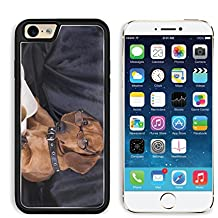 MSD Premium Apple iPhone 6 iPhone 6S Aluminum Backplate Bumper Snap Case iPhone6 IMAGE ID: 10142599 puppy purebred dachshund