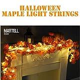 DDLBiz 1.7M LED Lighted Fall Autumn Pumpkin Maple Leaves Garland Thanksgiving Decor