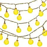 Globe String Light,Dailyart LED Starry Light Fairy Light for Garden,Wedding,Xmas Party (WW, Battery-powered, 13feet...