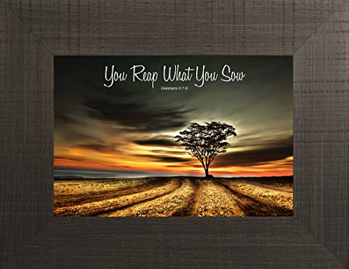 Reap What You Sow By Todd Thunstedt 20x26 Farm All Farming John Deere IH Farmall Allis Ford Holstein Dairy Hereford Beef Angus Bible Verse Quote Saying Jesus Framed Art Print Wall Décor Picture