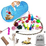 AILUKI 26PCS Cat Toys Kitten Toys Assortments, Variety Catnip Toy Set Including 2 Way Tunnel,Cat Feather Teaser,Catnip...