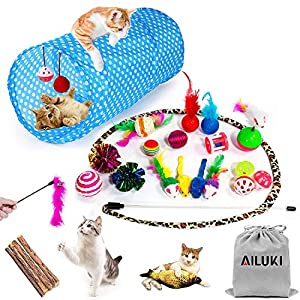 AILUKI 29 PCS Cat Toys Kitten Toys Assortments, Variety Catnip Toy Set Including 2 Way Tunnel,Cat Feather Teaser,Catnip Fish,Mice,Colorful Balls and Bells for Cat,Puppy,Kitty 2