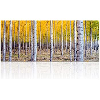 Large Size Autumn Forest Canvas Wall Art Prints,White Birch Tree Forest  Painting Printed On Part 84