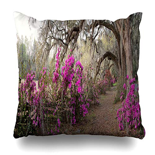 ArTmall Throw Pillow Case Garden Azalea Panorama Magnolia Plantation Charleston Bloom Sc At In Nature Parks Green Design Scenic Zippered Pillowcase Square Size 16 x 16 Inches Home Decor Cushion Covers