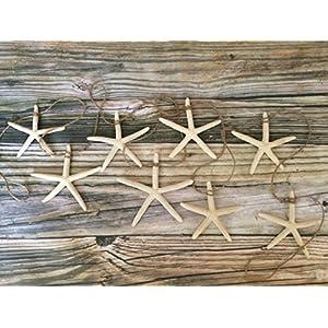 51-xNyDWDNL._SS300_ Beachy Starfish and Seashell Garlands