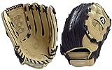 Akadema ACE70 Fastpitch Series Glove (Left Hand-Glove, 13-Inch)