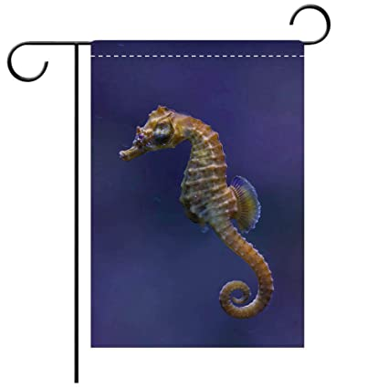 NEW EVERGREEN GARDEN FLAG SEAHORSE BEAUTIFUL COLORFUL  12.5 X 18