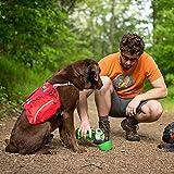 Kurgo Gourd (TM) Travel Dog Water Bottle & Dog