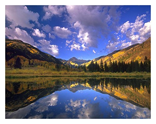 (Global Gallery Art on a Budget DP-397079-2228 Tim Fitzharris Haystack Mountain Reflected in Beaver Pond Maroon Bells Snowmass Wilderness Colorado Unframed Giclee on Paper Print, 22