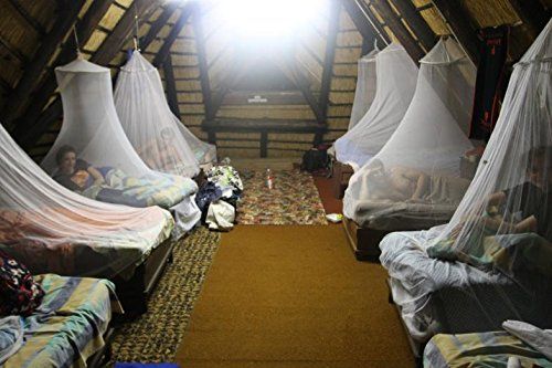 MOSQUITO NET CANOPY by RAY for large royal bed for home, for street, for travel by RAY (Image #4)