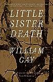 Image of Little Sister Death: A Novel