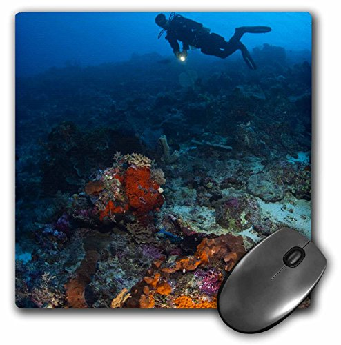 (3dRose LLC 8 x 8 x 0.25 Inches Mouse Pad, Scuba Diving, Tukang Besi Preserve, indonesia-As11 Sws0408 - Stuart Westmorl and (mp_74821_1))