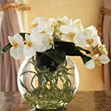Jane Seymour Botanicals Orchid Phalaenopsis in Pot, 11-Inch, White
