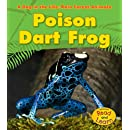 Poison Dart Frog (A Day in the Life: Rain Forest Animals)