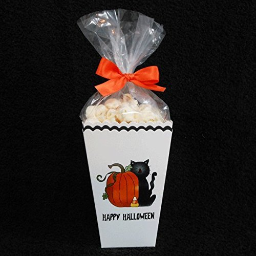 Halloween Popcorn Box Kits Empty, Black Cat with Pumpkin (set of 20) -