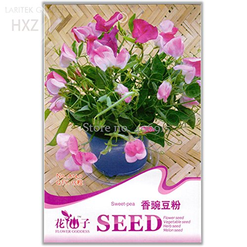 2018 Hot Sale!! Beautiful Sweet Pea Flower Seeds, 15 Seeds, Potted Pink Sweet Pea Shaped Like a Butterfly A140