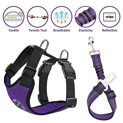 (Lukovee Dog Safety Vest Harness with Seatbelt, Dog Car Harness Seat Belt Adjustable Pet Harnesses Double Breathable Mesh Fabric with Car Vehicle Connector Strap for Dog (Medium, Purple Seatbelt))