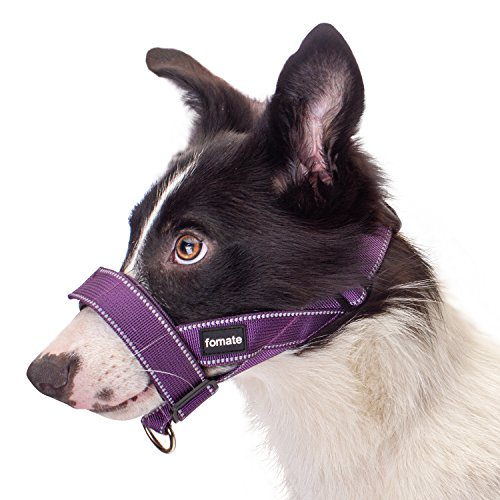 FOMATE Quick-Fit Dog Muzzle Lead Collar with Adjustable Sections, Quick Release Strap, and High Visibility Safety Reflective Stripes (Medium, Reflective DarkSlate)