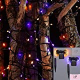 Celebrity Solar Outdoor Party Orange and Purple Lights 2 Pack 100 Count Solar LED kit Great for Halloween or Other Outdoor Lighting Needs