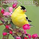 Garden Birds 2017 Wall Calendar