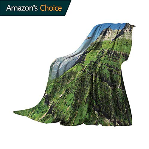 Eagle Weighted Blanket for Kids,Wild Majestic Bird Flying Great Landscapes Green Mountains Forest Nature Image Reversible Soft Fabric for Couch Sofa Easy Care,70