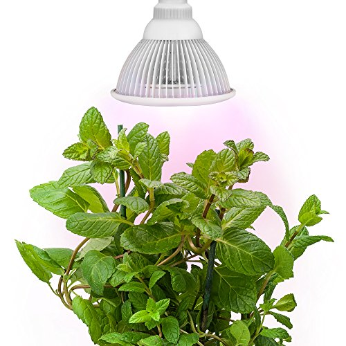 Led Grow Light Bulb Review